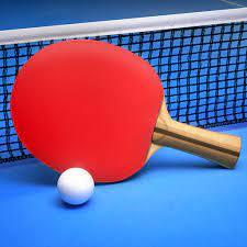 Ping Pong Fury Mod Apk