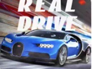 Real Drive Sim Mod Apk